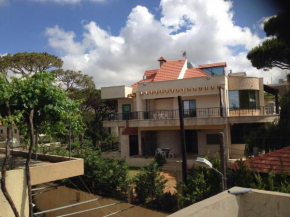 Hotels in Libanon