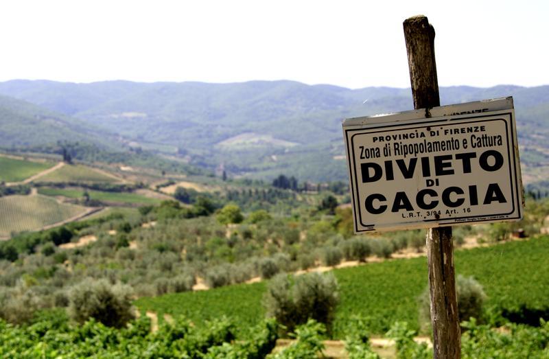 Italien (c) mediaup