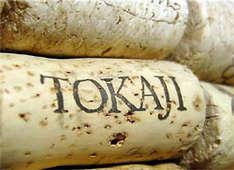 Weinfest in Тоkаj